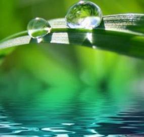 Mitä on lähdevesi ja kuinka se eroaa mineraalivedestä